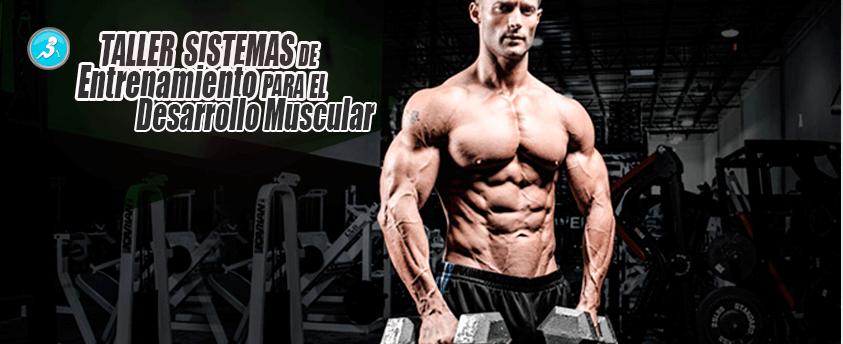 Taller Sistemas De Entrenamiento Para El Desarrollo Muscular